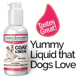 Coat & Skin for Dogs